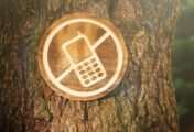 Internet: los beneficios de la desconexión