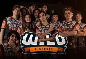 Wild: el equipo chileno de Esports que sigue creciendo pese al COVID-19