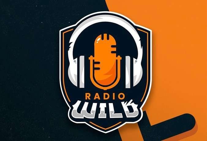 Radio Wild: la primera radio chilena enfocada en contenido gamer