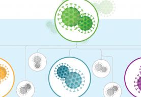 Guía para entender los mutantes y las variantes del SARS-CoV-2