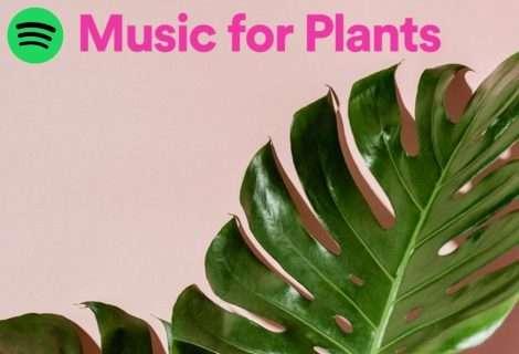 Spotify crea la primera colección especialmente para plantas