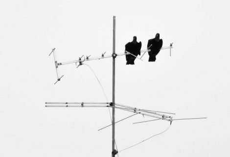 Todo lo que debes saber sobre las antenas de televisor